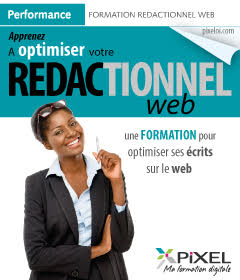 formation redactionnel web