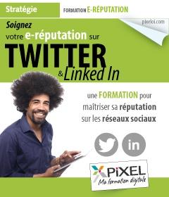 Formation e-reputation Twitter et Linkedin à la Réunion