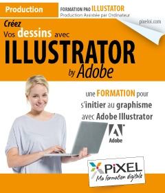 Formation Illustrator à La Réunion