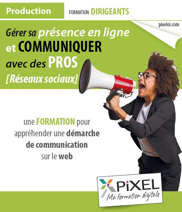 Formation Dirigeants réseaux sociaux à la Réunion 974